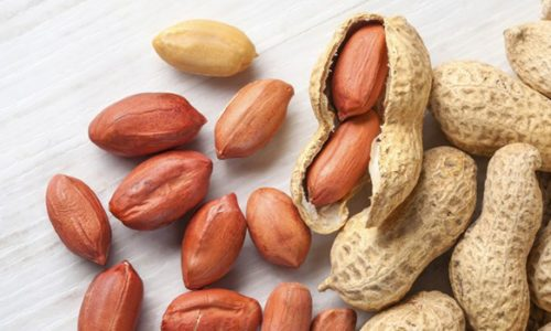 7-Healthy-Nuts-You-Should-Try